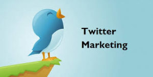 Basic ideas to promote twitter marketing